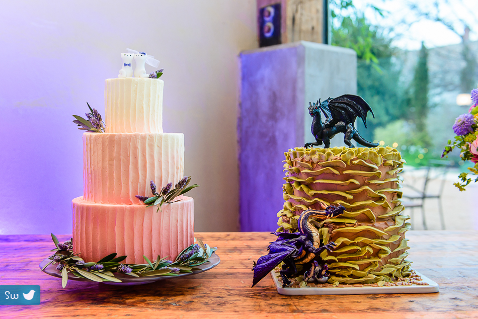 cake and dragon cakes by Portrait of bride and groom by Austin Wedding Photographer at Barr Mansion